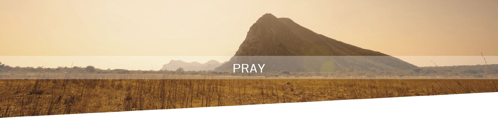 Africa-Alive-Banner-Pray-2.png